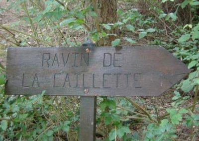 La Caillette